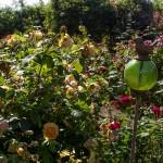 rosenfeines-garten-galerie-03-1