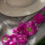 rosenfeines-garten-galerie-10